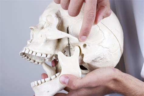 signs of jaw bone disease ehow ehow how to jaw pain causes symptoms and treatment