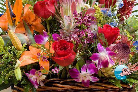 elenco nomi dei fiori nomi di fiori significato nome dei fiori