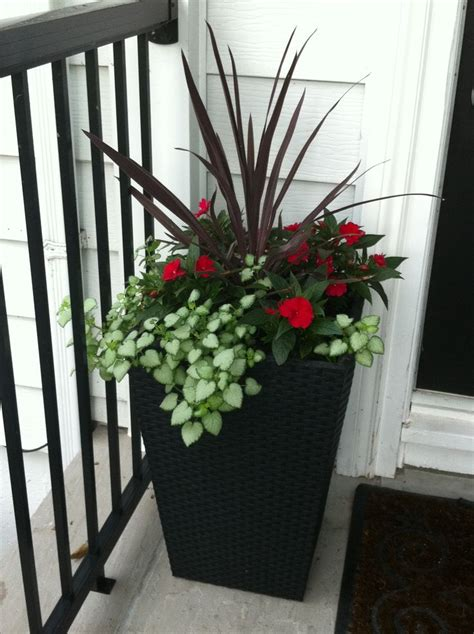 Planter Idea For Front Door Garden Ideas Pinterest Front Door Planters