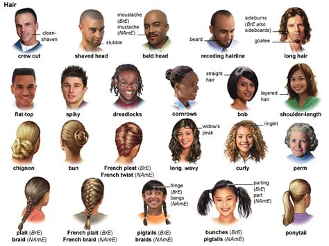 appearances and hairstyles esl braid 1 noun definition pictures pronunciation and