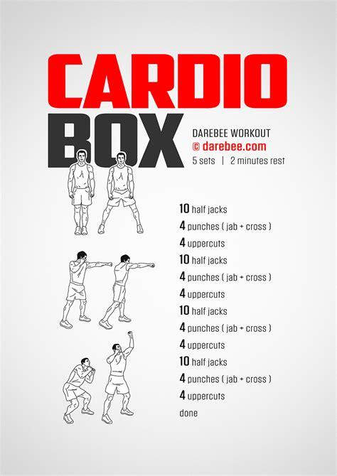 cardio box workout