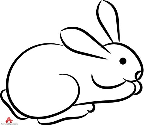 Outline Images Of Animals Clipart Best Outline Pictures Of Animals For Colouring