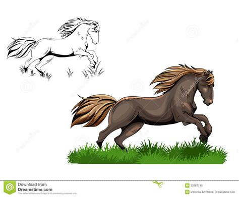 image gallery horse drawings to colour running horse royalty free stock photo image 33787745