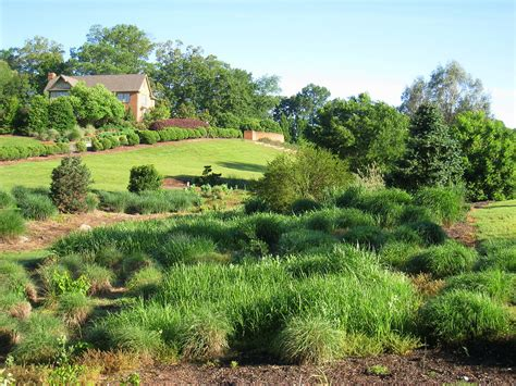 south carolina botanical garden wikipedia