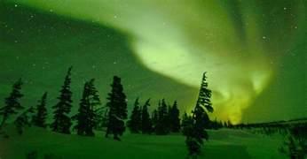 Home Interior Bears northern lights tour churchill arctic adventures