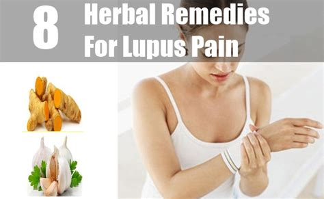 Home Remedies For Lupus by 8 Herbal Remedies For Lupus How To Treat Lupus