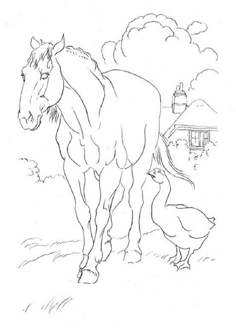 coloring pages of paint horses ryhorses for paint colouring pages