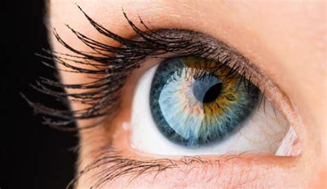 imagenes de ojos expresivos el ojo humano fisicalab