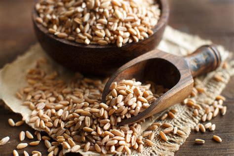 alimenti con magnesio alimenti ricchi di magnesio dove si trova e propriet 224