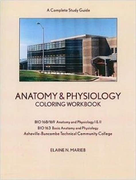anatomy and physiology coloring workbook chapter 14 anatomy and physiology coloring workbook