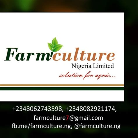 Stress Free Investing stress free agro business with high investment returns agriculture nigeria