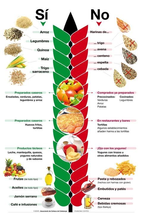lista alimentos para celiacos m 225 s de 25 ideas incre 237 bles sobre alimentos gluten en