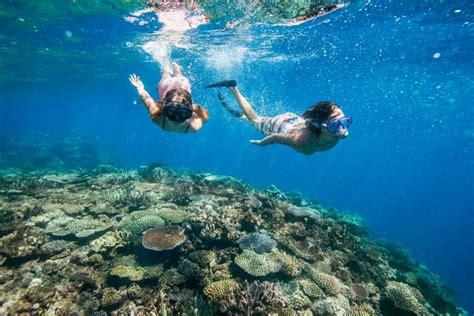 dive fiji diving the official website of tourism fiji
