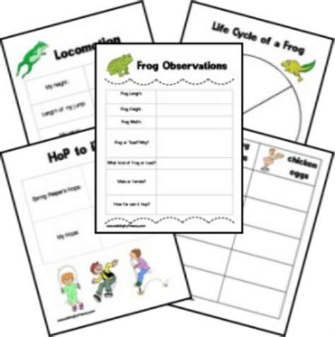 printable observation games 25 easy frog and toad ideas and activities teach junkie