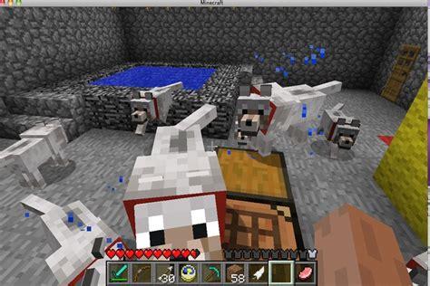 images  minecraft wolf  pinterest
