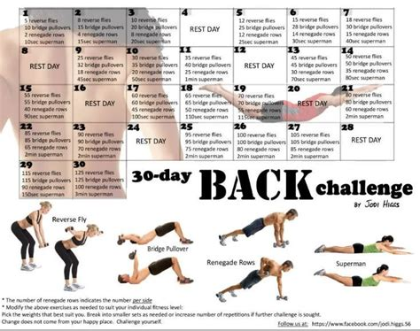 30 day back workout challenge search working