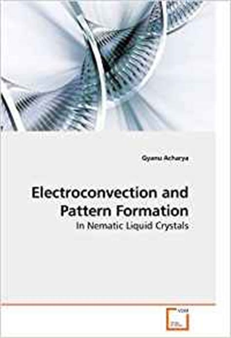 pattern formation in magnetic fluids amazon com electroconvection and pattern formation in