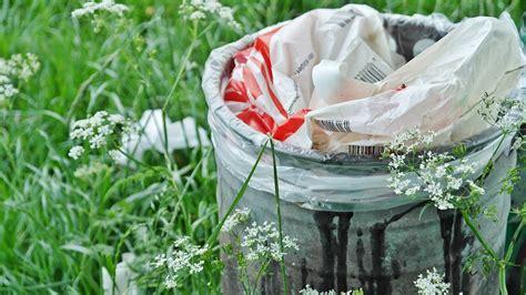 commercio albo gestori ambientali albo gestori rifiuti pubblicati i quiz per responsabile
