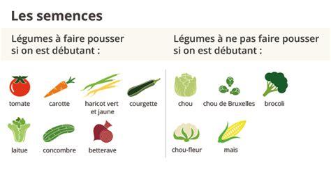 Legumes Qui Poussent Vite by Quand Semer Les Haricots Verts Les Enfants Pour Suamuser