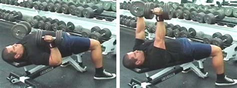 db flat bench press how to build a thick muscular armour plated chest mass
