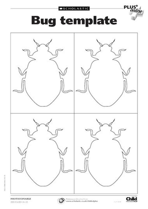 insect templates a remainder of one bug template free primary ks1