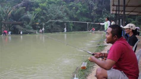 Pancing Udang pancing udang kolam sp kuala pilah doovi