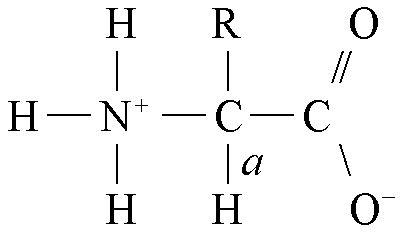 L Chemical Formula by