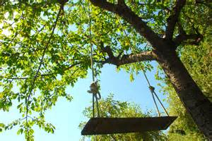 tree swing tree swings and cherries italy off the beaten strada