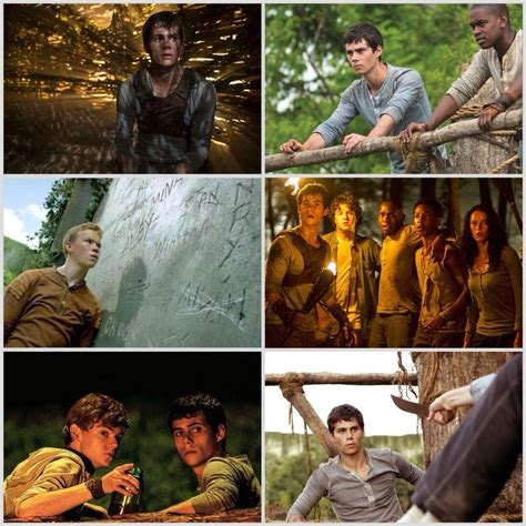 Alby Gamis 124 best images about the maze runner on maze and maze runner