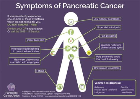 Pancreatic Cancer & its Symptoms   My Identity Doctor