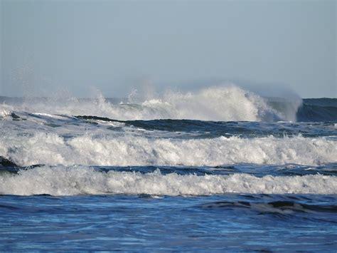 olas oscilacion y traslacion 191 c 243 mo se forman las olas