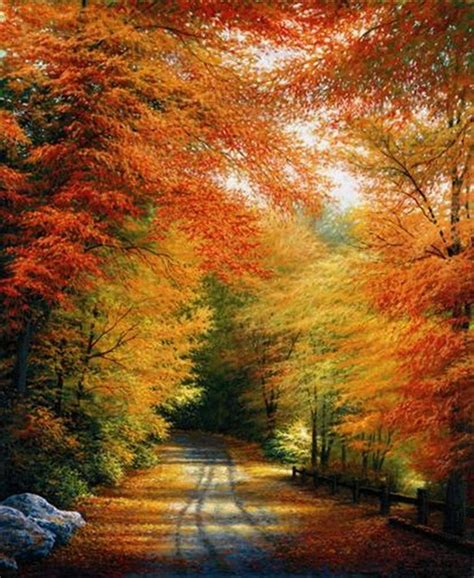autumn colors autumn fall leaves color red image 543745 on favim com