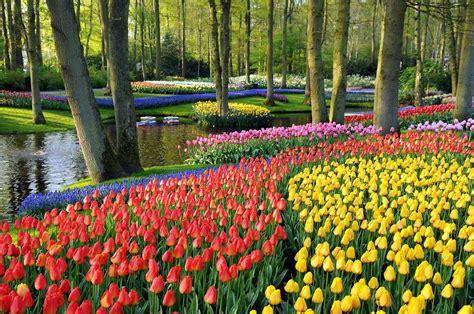 World S Largest Flower Garden Keukenhof Tulip Gardens Flower Garden In Amsterdam