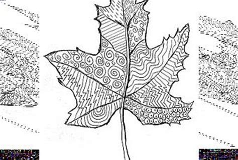 leaf pattern with lines line pattern leaf paperblog