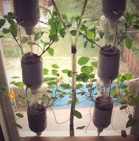 diy indoor window garden ideas  urban gardeners