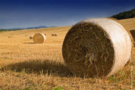 commissione agricoltura la commissione agricoltura castelnovo ne monti
