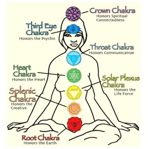 solar plexus chakra location information about solar plexus chakra products for sale