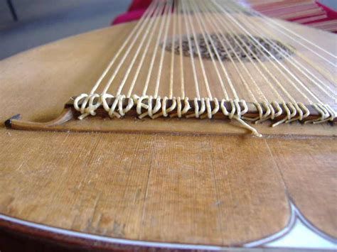 strings of everything you always wanted to about the lute but