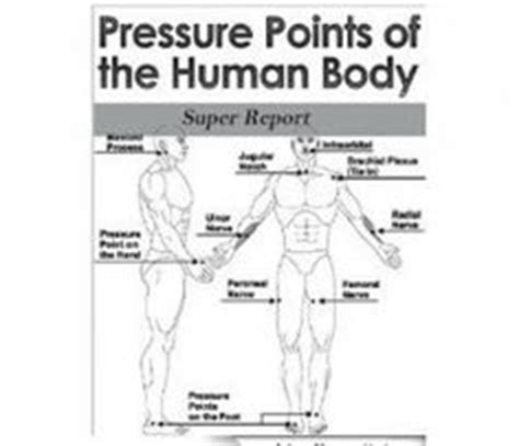 28+ [pressure points human diagram anatomy organ]