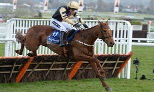 weight management yorkhill racing results news and tips daily mail