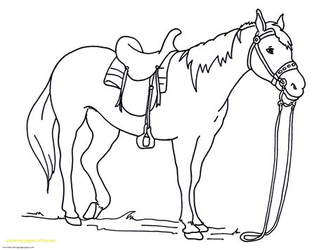 coloring pages of horseshoes coloring pages of horses with horse coloring pages