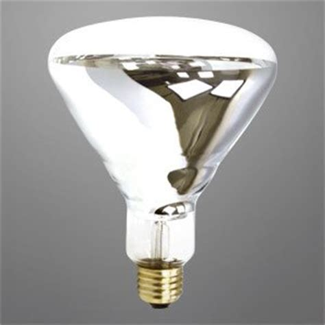 heat l light bulb 375 watt br40 heat l clear 5 000 hour industrial grade