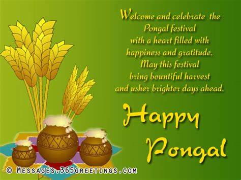 pongal wishes messages and pongal greetings   365greetings