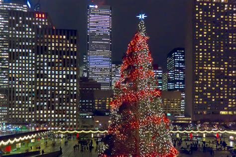 toronto is about to get canada s biggest christmas tree