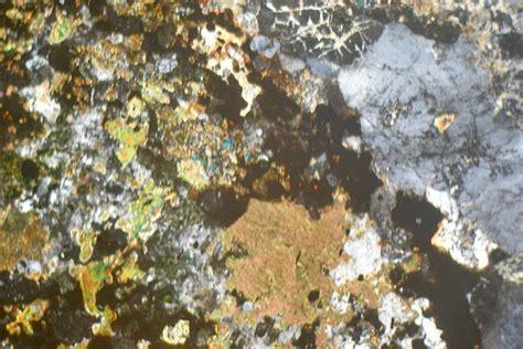 nepheline syenite thin section syenite ledmore assynt scotland thin section