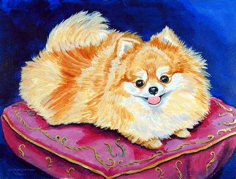 pomeranian painting adoration pomeranian painting by lyn cook