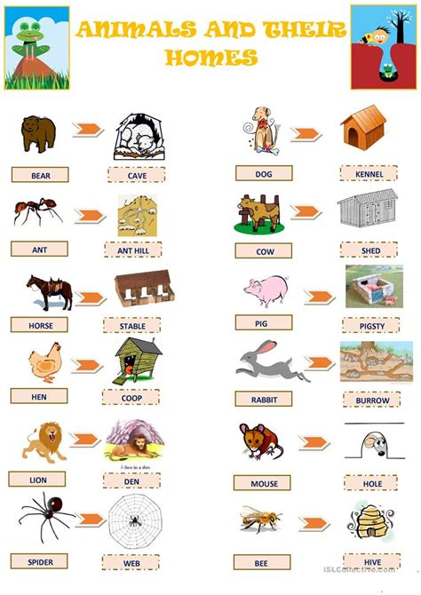 their home animals and their homes worksheet free esl printable