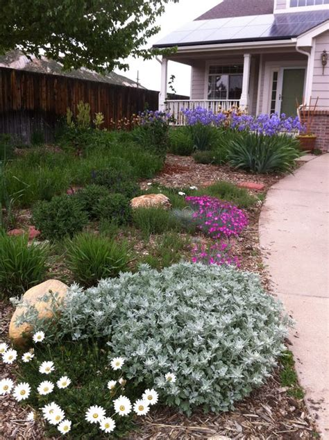 front yard xeriscape ideas gleason completely converted