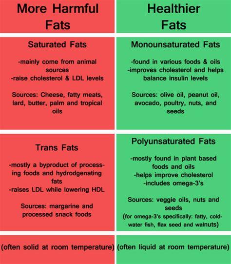 4 types of healthy fats 3 types of fats banded carolina