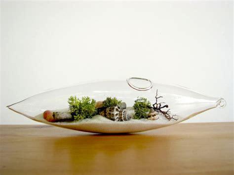 coole wandlen kaffeekanne terrarium mit herrlichen luftpflanzen selber